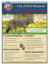 2018 Coyote Flyer.png